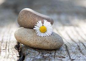 Stone+Flower